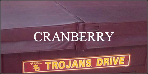 Cranberry Swatch