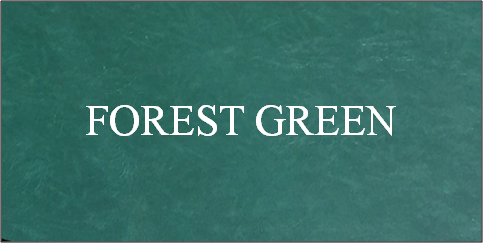 Forest Green Swatch